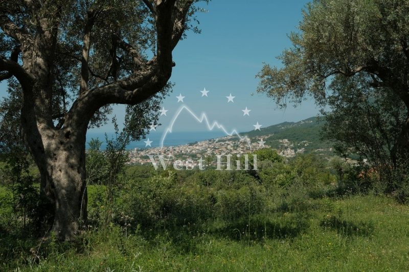 Plots for sale in montenegro west hill for Westhill swimming pool phone number